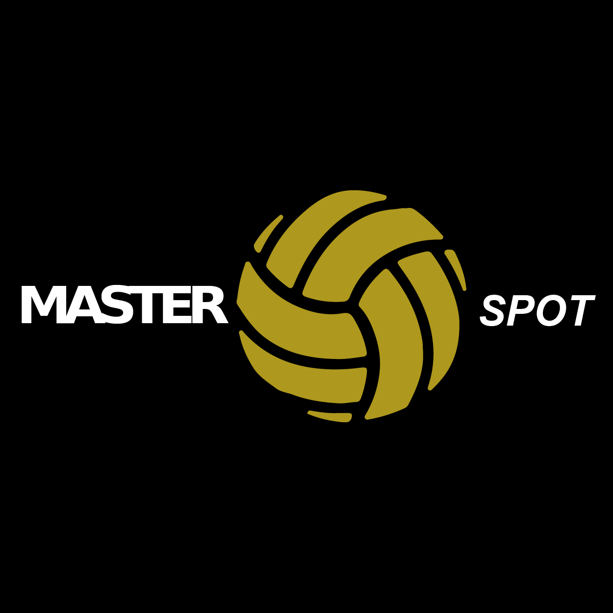 logo master spot volley